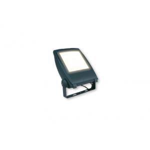 Amaro-50 6000 - 6500 K